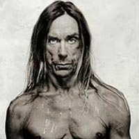 Iggy And The Stooges Rar