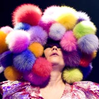 Bjork Pulls Out Of 'Volatile' Wild In The Country Festival