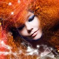 Bjork Defends Releasing 'Biophilia' iPad App