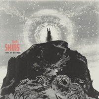 The Shins - 'Port of Morrow' (Columbia)
