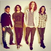 US pop punks We The Kings offer free track to UK fans