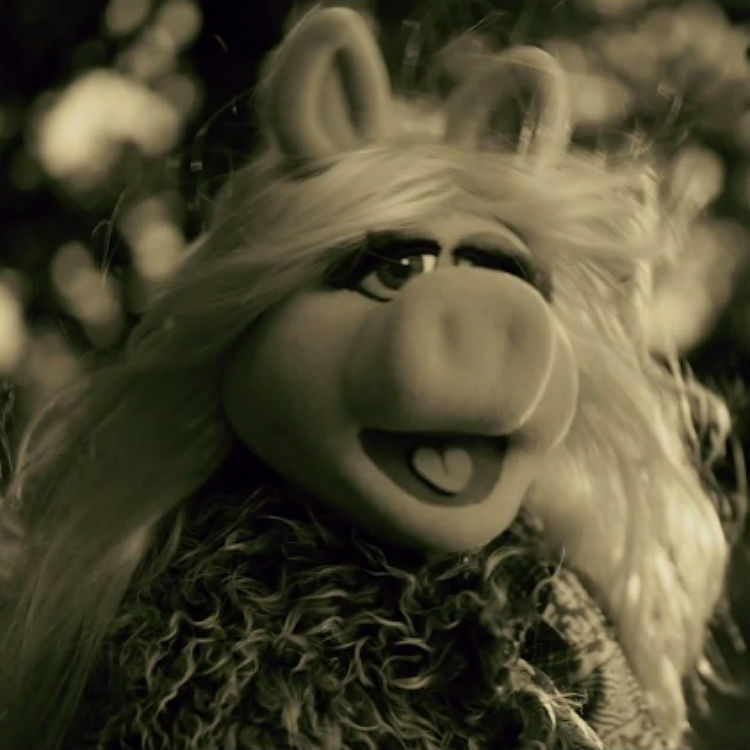 Adele's 'Hello' from her new album 25 is parodied by The Muppets