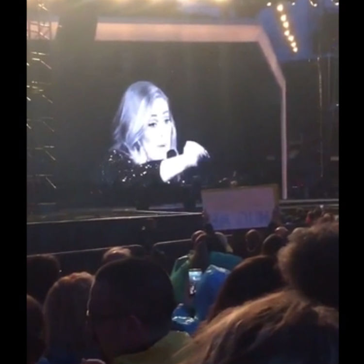 Adele tells off fan at gig for filming with video camera