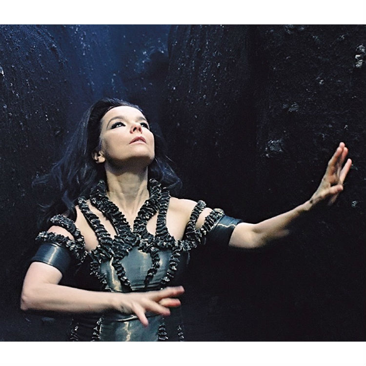 Bjork Black Lake video from Moma exhibition revealed - watch