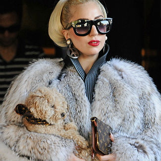 Lady Gaga claims fur coats are like works of art