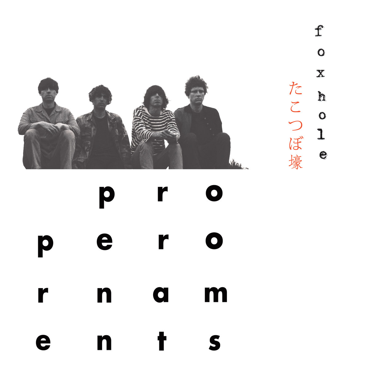 Album review The Proper Ornaments James Hoare Proper Foxhole