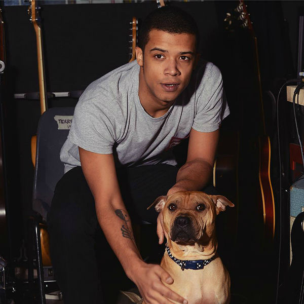 Raleigh Ritchie: 'Singles defeat the idea of an album'