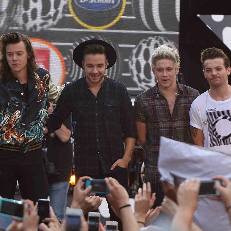 One Direction hiatus not split, Harry Styles, Liam Payne solo