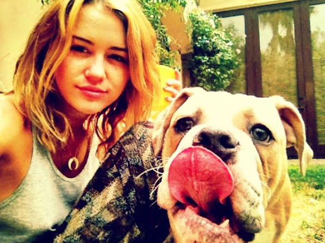 1. Miley Cyrus, age 19: worth $120 million