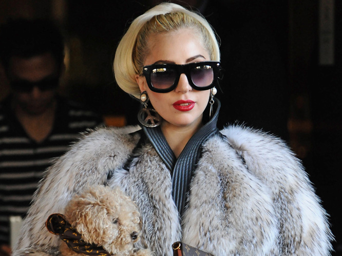 Lady Gaga slammed for wearing fur: PETA has accused Gaga of being just like ''mindless Kim Kardashian'' after she was seen wearing a number of coats thought to be made from animal fur. PETA also accused her of being a ''turncoat'', after in 2009 the singer said in an interview