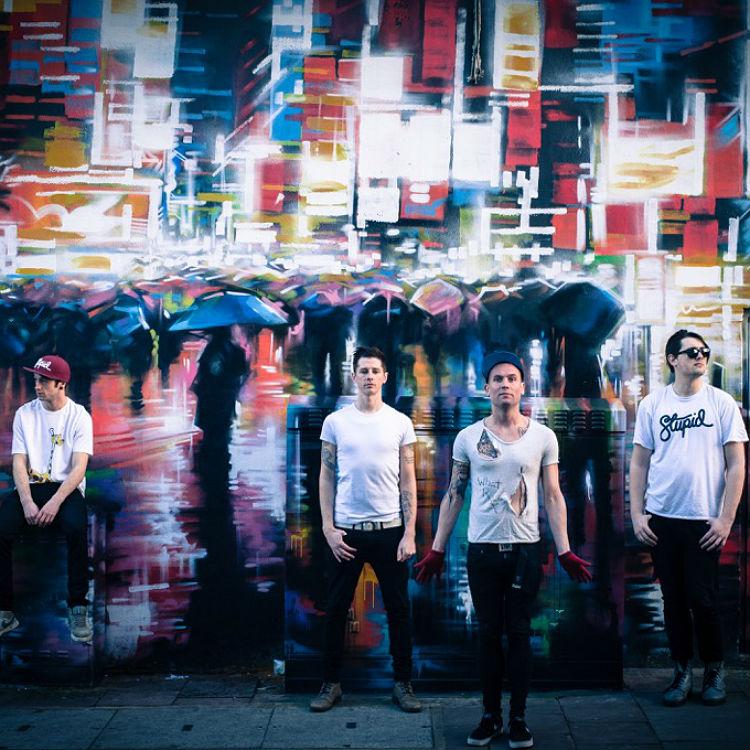Premiere: Animal Music reworking of The Killers Mr Brightside