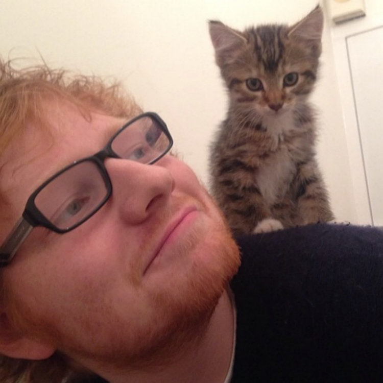 25 musicians and their incredibly cute pets