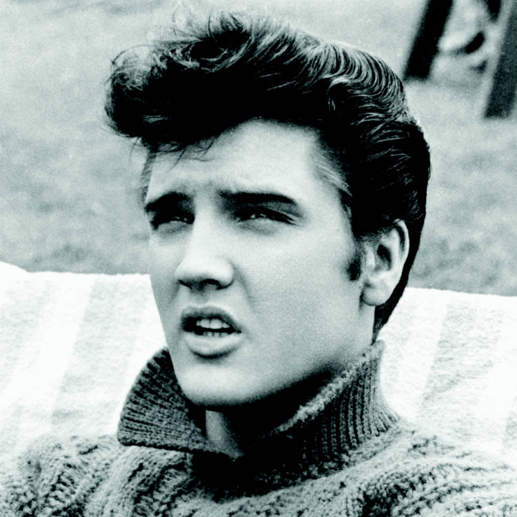 Elvis Presley named his horse Star Trek The Seven Ages Of Elvis