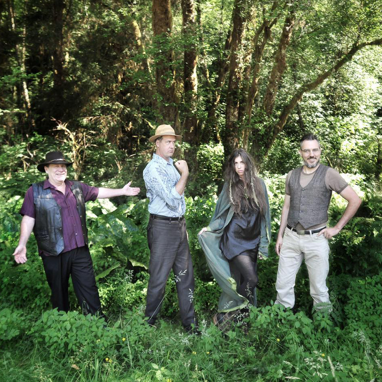 Former Nirvana bassist Krist Novoselic new band Giants In The Trees