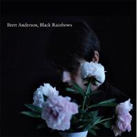 Into The Wilderness: Brett Anderson