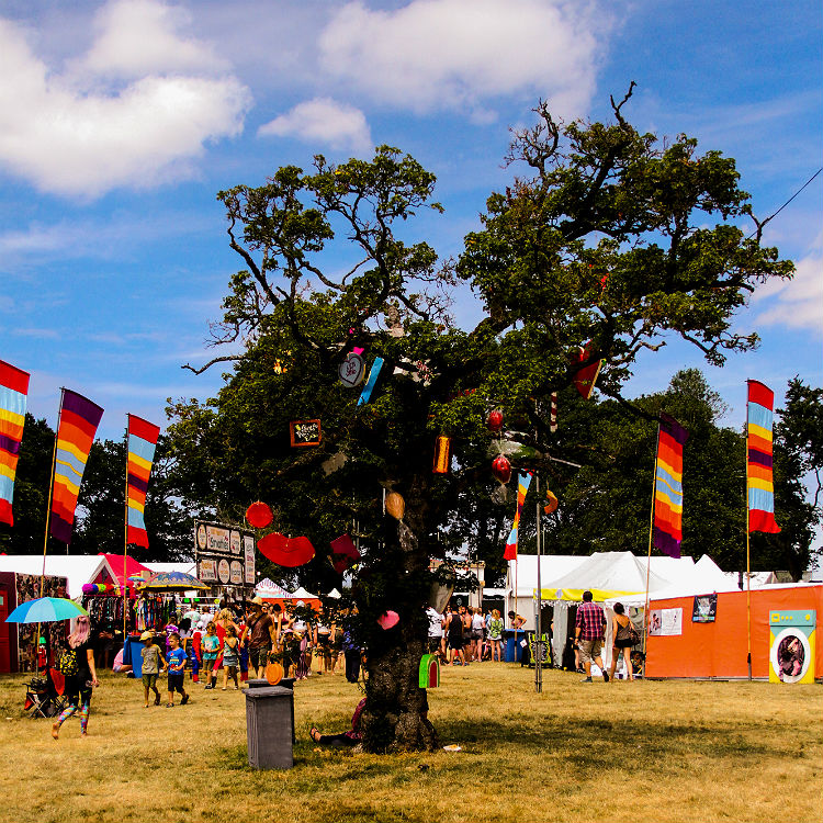 Metronomy and The Cinematic Orchestra enchant at Blissfields