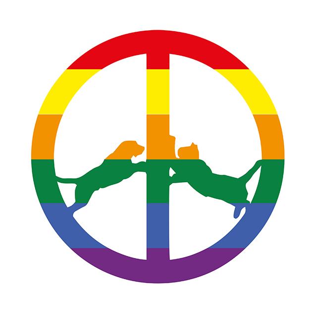 Hype Williams review Rainbow Edition Big Dada