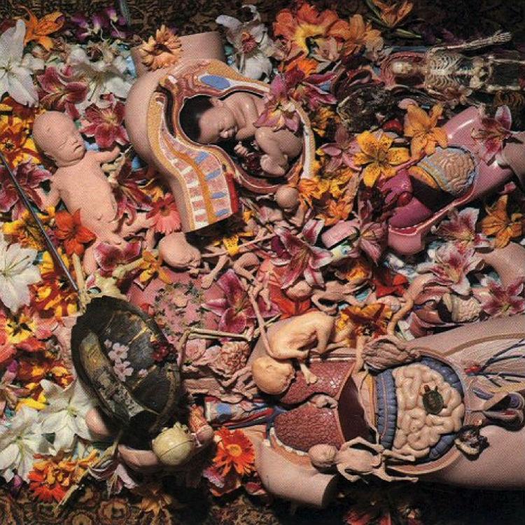 Babes In Toyland Lori Barbero interview on Kurt Cobain In Utero album