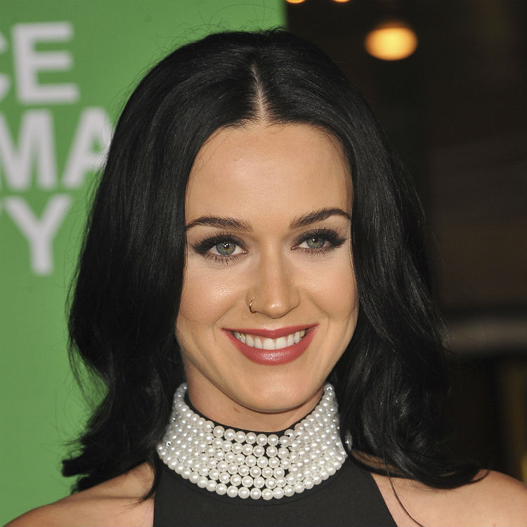 Katy Perry shares in-studio Instagram clips