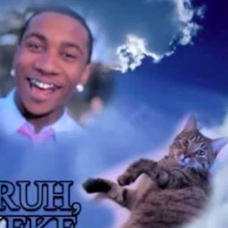 Listen: Rapper Lil B collaborates with his cat on weird new track