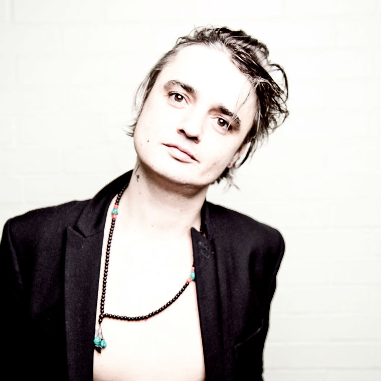 New Peter Doherty single I Don't Love Anyone taken from album