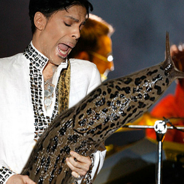 Happy Hump Day: Icons playing slugs instead of guitars