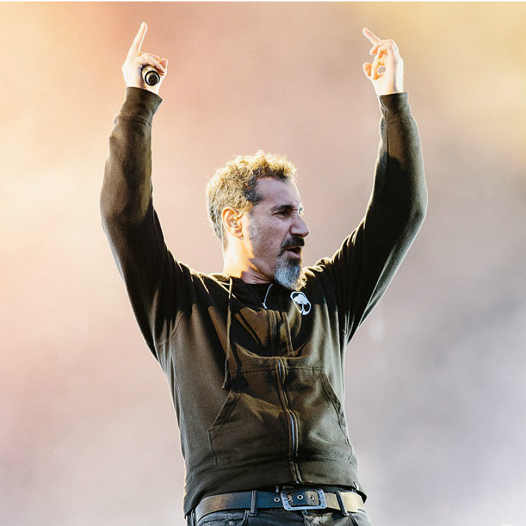 Download Festival review  2017 System of a down lineup