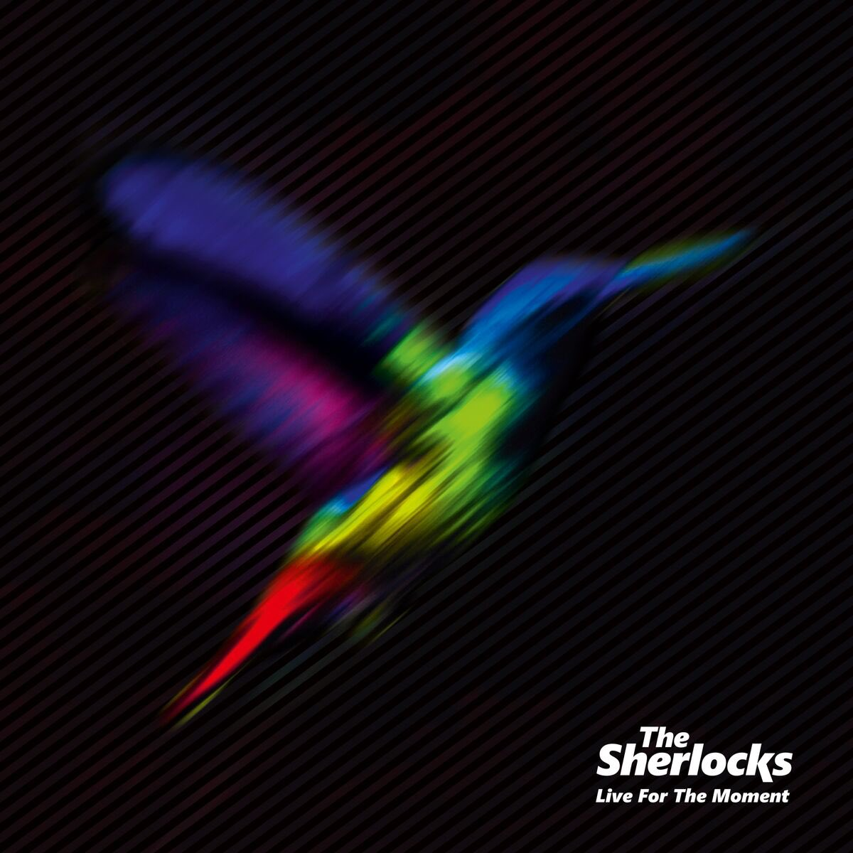 Album Review: The Sherlocks - 'Live For The Moment