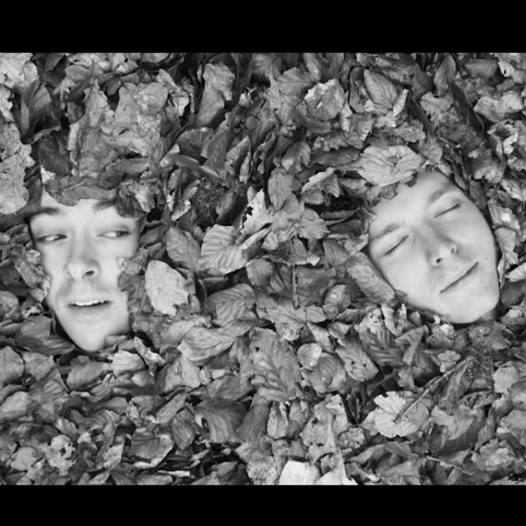 Twin Hidden premiere video for A Berry Bursts, watch on Gigwise
