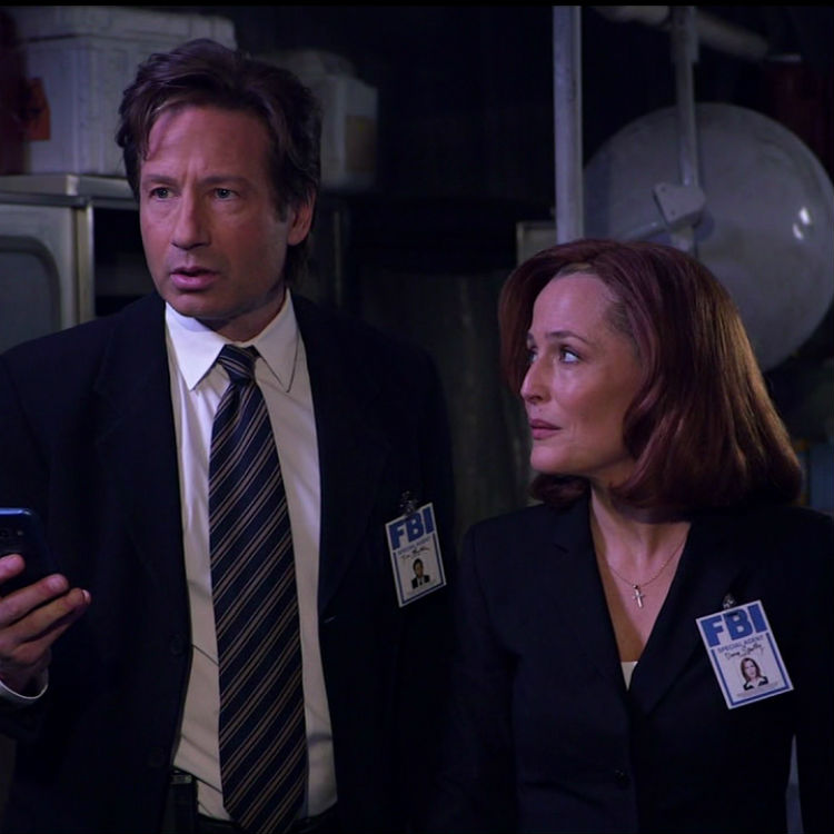 David Duchovny Band Tour