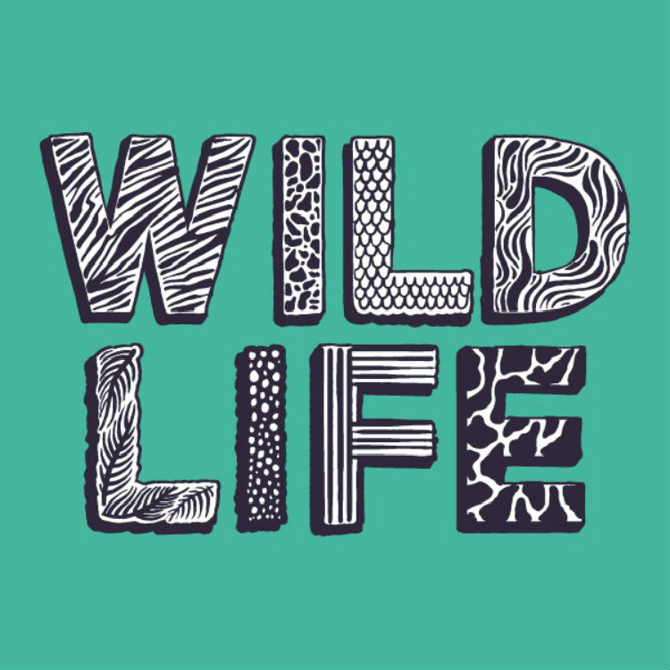 Wild Life Festival - Weekend Tickets