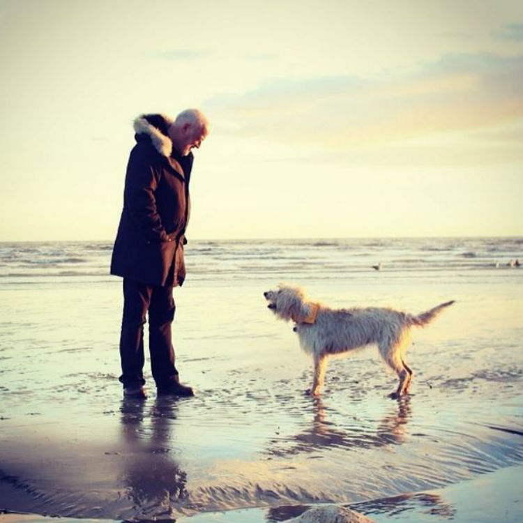YouTuber Zoella posts photo of 'random man', it turns out to be David Gilmour